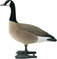 6 PACK Big Foot B2 Canada Goose Decoy Full-Body Lifelike Geese Hunting Decoys