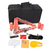Exquisite Beginner Student Clarinet Kits Key of Bb with Carry Case Pink