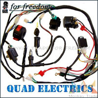 110cc ATV Quad Electric Full Set Parts Complete Electrics Wiring Harness