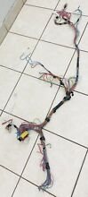 Splendide 2000 Wiring Harness