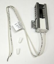 New Replacement  for Electrolux Frigidaire 5303935066 Oven Range Flat Igniter