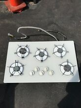 Thermador 5 burner gas cooktop 36  x 21 3 4  x 3 1 2  Thermador GGN365W