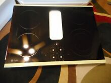 GE Profile Downdraft Cooktop 30 inch  Glass Top Only  NEW Part Free Shipping B