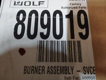 809019 Wolf burner assembly 809019