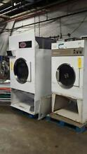 Steam dryers