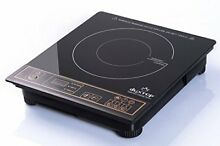 Duxtop 1800W Portable Electric Cooktop Countertop Burner Gold Digital Timer 120V