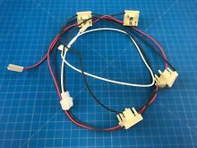 Genuine Amana Range Oven Harness Wire Switch W10812380