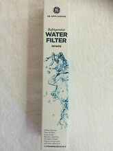 GE RPWFE GENUINE WATER FILTER Refrigerator Ice  Premium Filtaration Device