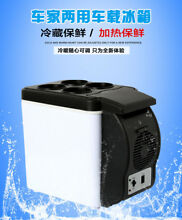 12V 6L Portable Fridge Thermoelectric Cooler Warmer Travel  Car Refrigerator