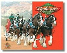 Budweiser Beer Ad Advertisement Clydesdale Horses Refrigerator Tool Box Magnet