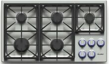Dacor Discovery DYCT365GSLP 36 Inch Gas Cooktop with 5 Sealed Burners