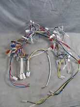 GE Advantium Microwave Complete Wire Harness WB18X10458 Includes Internal NEW