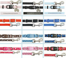 Small Dog Puppy Collar & Lead Sets From Ancol Fully Adjustable Stars Paw n Bone