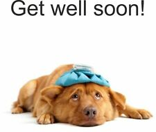 dog breed get well soon  birthday anniversary thank you special occasion card