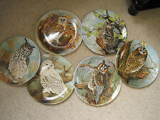 Coalport 'The Wise Owl' collector's plate by Michael Sawdy, various available