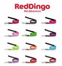 Red Dingo Patterned Dog Leads - Choice of Styles & Sizes