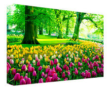 Made in UK landscape/flower CANVAS PICTURE MODERN WALL ART Print any size