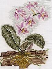 Moth orchid or Phalaenopsis counted cross stitch kit or chart 14s aida