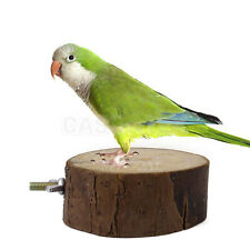 Round Wooden Coin Parrot Bird Cage Perches Stand Pet Budgie Hanging Toy 6cm 8cm