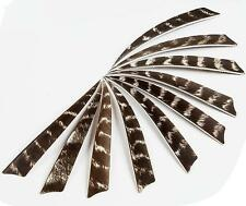 """Archery 4"""" Natural Turkey Barred Feathers Arrow Fletching Right Wing Shield 30pc"""