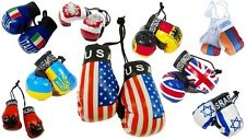 Small Boxing Gloves National Flags Car Hanger Home Office Hanging Boxing Gloves