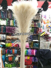 Free shipping 10-200 pcs beautiful White peacock feather eyes 32-36 inchs hot