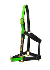PVC Horse Halter/Headstall - Black & Green - With Nameplate