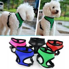 Puppy Soft Mesh Padded Pet Dog Cat Harness Control Safety Strap Vest Size XS-XL