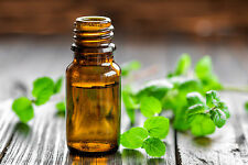 Aromata Nourishing Peppermint ( Mentha Arvensis ) Essential Oil Soothing Benefit