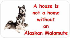 Alaskan Malamute - glossy labels/stickers - various designs / personalised