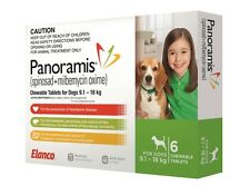 Panoramis Green for Medium Dogs (9.1-18kg) | FREE Shipping to select Australi...