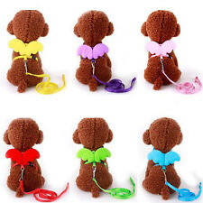 Pet Dog Cat Cute Adjustable Angel Wing Safety Harnesses Lead Leash Training Rope