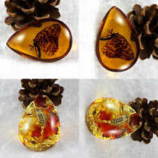 Beautiful Resin Amber Butterfly Scorpion Insect Stone Pendant Necklace 1pc