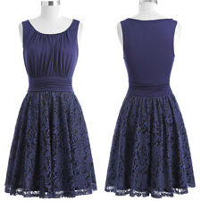 Vintage Sleeveless Round Neck Pleated Lace  A-Line Dress Summer Evening Dresses