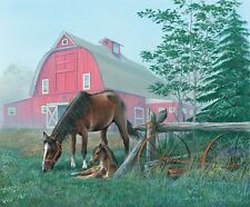 Quiet morning - horse and foal Poster Print by John Bindon (13 x 6)