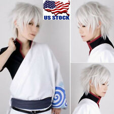 Men's Anime Cosplay Silver White Short Straight Hair Synthetic Full Wig Hair USA