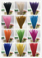 Beautiful! 10-100pcs natural pheasant tail feathers 10-22inch/25-55cm  13 colors