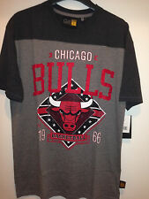 Chicago BULLS Game Day Tee - BULLS Premium Short Sleeve Tee Shirt by G-III