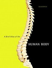 A Brief Atlas of the Human Body by Jon B. Mallatt, Katja Hoehn, Matt Hutchinson,
