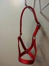 Cow,Yearling, Calf Halters USA Made All Metal Hardware