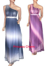 Princess Charm Size 10 12 14 16 18 20 Purple Blue Evening Dress 1 Shoulder New