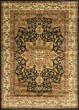 BLACK ORIENTAL AREA RUG PERSIAN CARPET TRADITIONAL 8083