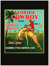 296.Art Decor POSTER.Graphics to decorate home office.Florida Cowboys Fruit Ad.