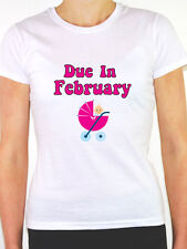 DUE IN FEBRUARY - Baby Girl / Pregnant / Pregnancy / Pink Themed Womens T-Shirt