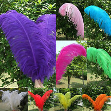 FREE SHIPPING! Wholesale 5PCS Natural OSTRICH FEATHERS 6-30inch/15-75cm AC0060