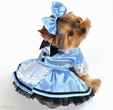 Pet Dog Cat Alice in Wonderland Halloween Gift Fancy Dress Costume Outfit XS-XL