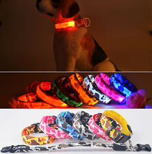 NEW LED Dog Personalised Collar Nylon Pet Light-up Flashing Glow Safety S M L Sz
