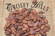 Organic Cocoa/Cacao Beans Trinitarios ( Foods of The Gods ) Whole Bean Raw Vegan