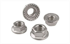 Metric DIN6923 304 Stainless Steel Hex Flange Nut Hexagon Nut With Flange M3-M12