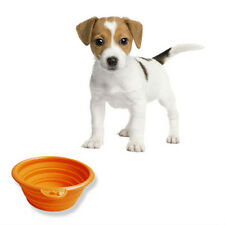 Silicone Collapsing Dog Bowl - Travel Camping Cat Pet Food Drink Collapsible